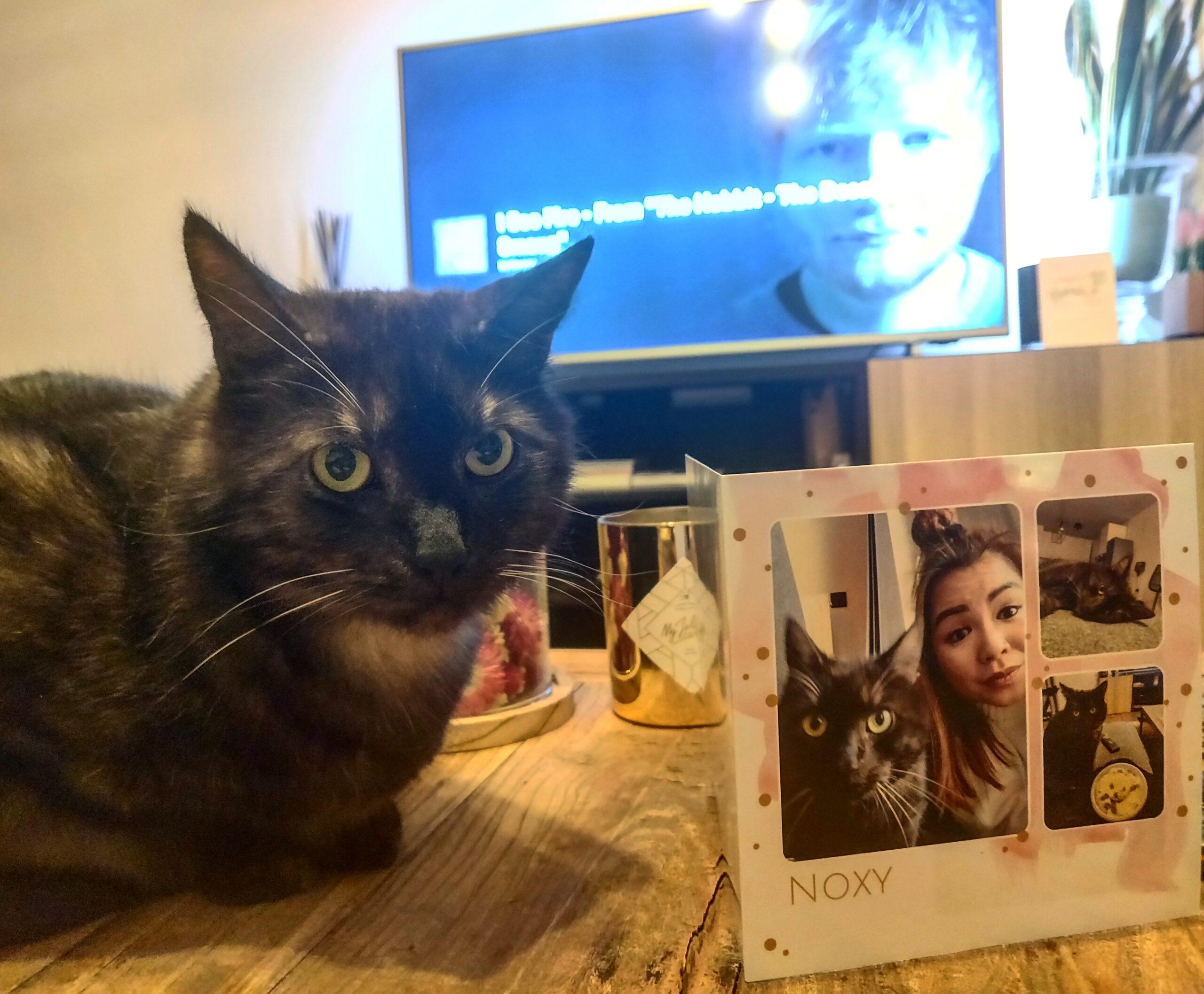 Noxy (Mary)